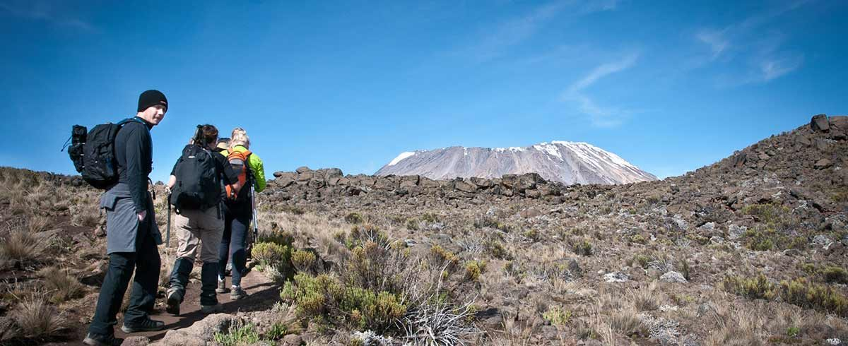 Climbers walk rocky trail to summit Kilimanjaro Tanzania
