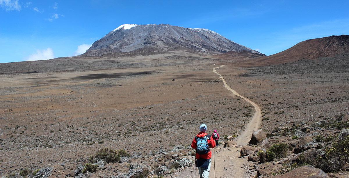 Mountain climber on the trail to Mount Kilimanjaro climbing Kilimanjaro Tanzania