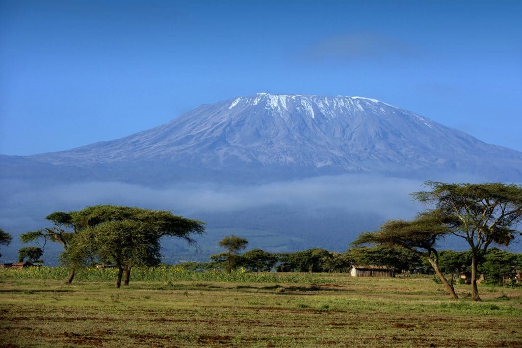 Climb Kilimanjaro, The view from Amboseli