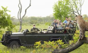 Game Drive During African Vacation