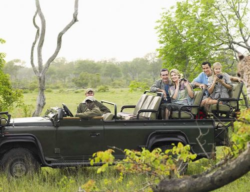 What You Should Know Before Booking Africa Vacation?