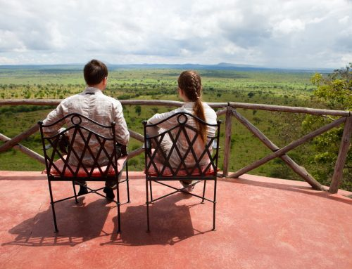 Tarangire Safari Lodges: The 9 Best Mid-Priced Camps & Lodges of 2019