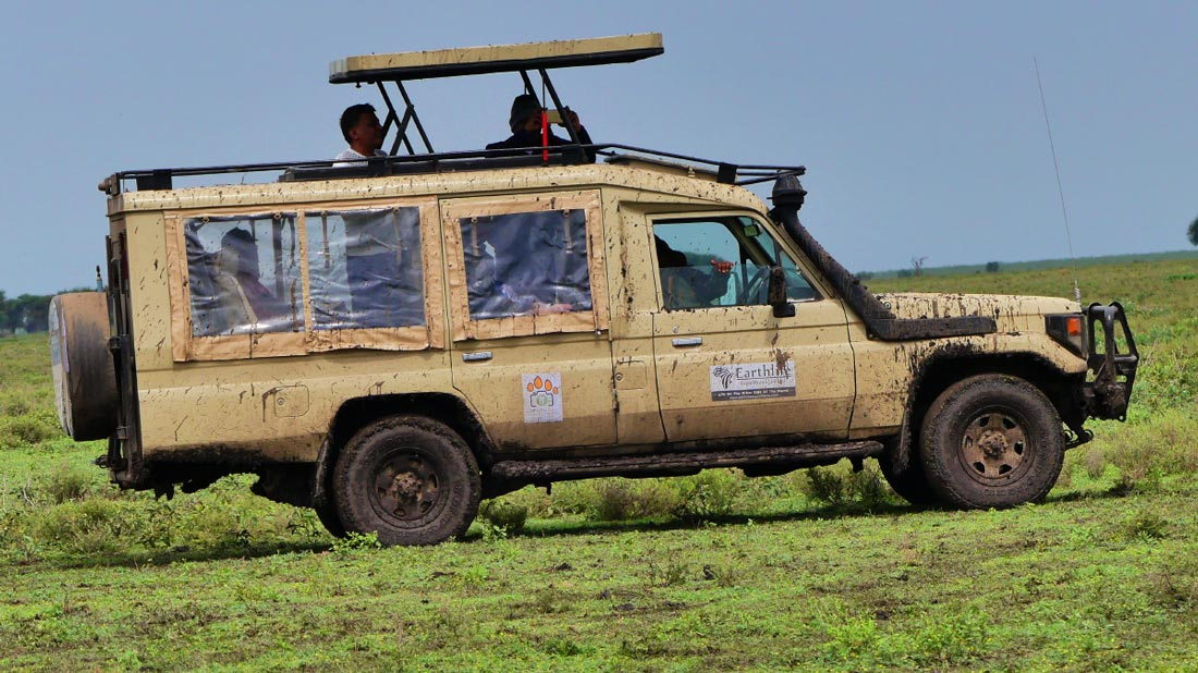 Africa Family Vacation Game Drive at Serengeti