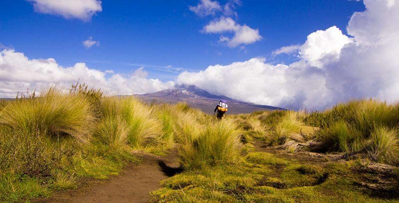6 Day Mount Kilimanjaro Adventures - Machame Route
