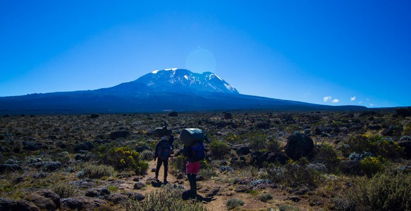 7 Day Kilimanjaro Climb And Safari