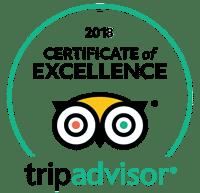 Customer Reviews - Tanzania Safari Experience With Earthlife