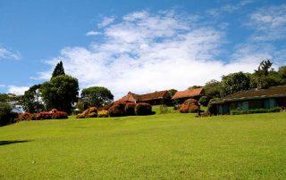 Aberdare Country Club Garden