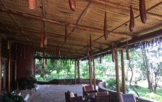 Serena Lodge Lounge