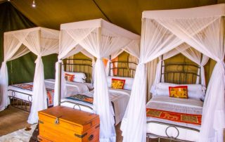 Guests Tent With Triple Beds
