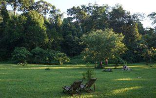 Natural Garden at Hondo Hondo Udzungwa Forest Tented Camp