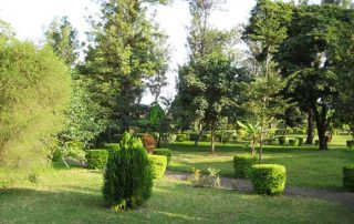 Beautiful Garden at West Kili