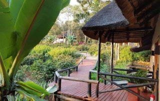 Walkway at Kitela Lodge