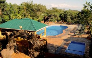 Kudu Lodge Swimming Pool