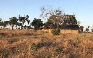 Lemala Ndutu Camp Tents Exterior View