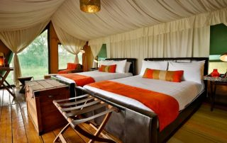 Lemala Mara Camp Guest Tent Interior