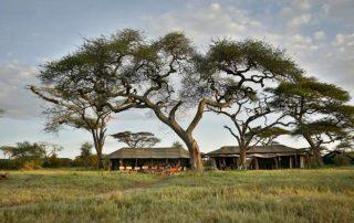 Beautiful Nature View Lemala Mara Ndutu Camp