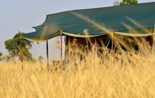Lemala Ndutu Tented Camp Glassy From
