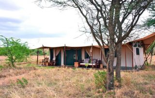 Lemala Ewanjan Tented Camp Guest Tent Day Time View