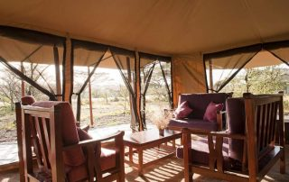 Mara Under Canvas Lounge