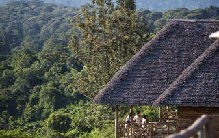 Neptune Ngorongoro Luxury Lodge Forest Views