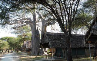 The Tents of Tarangire Safari Lodge