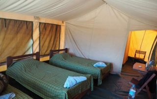 Whistling Thorn Tented Camp Triple Room