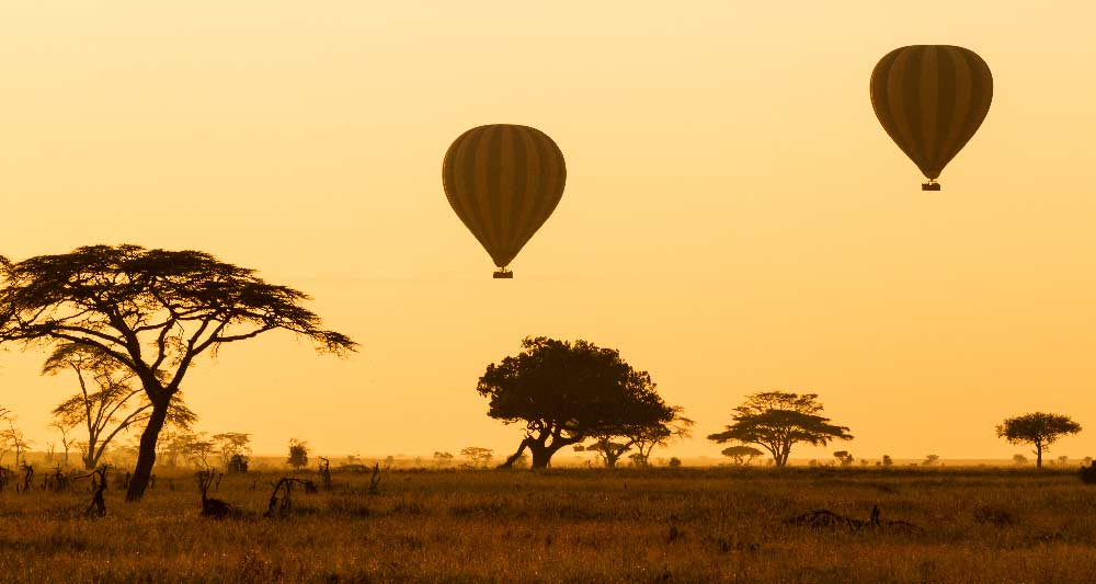 African Hot Air Balloon Safari, African Safari Sky Adventures