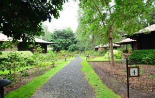 Outside pathway & Hangouts area