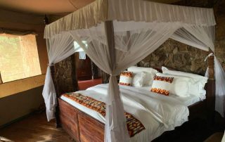 Guest Tent With King Bedroom