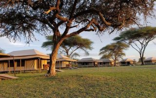 Overall Tent Exterior of Mbugani Camp