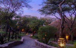 Serengeti Serena Lodge Sundown View