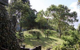 The Nature at Ngorongoro Serena