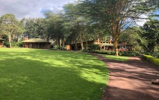 Tloma Mountain Lodge Garden