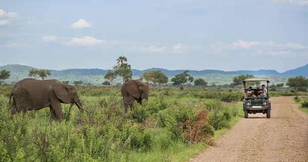 Tanzania safari at Mikumi National Park